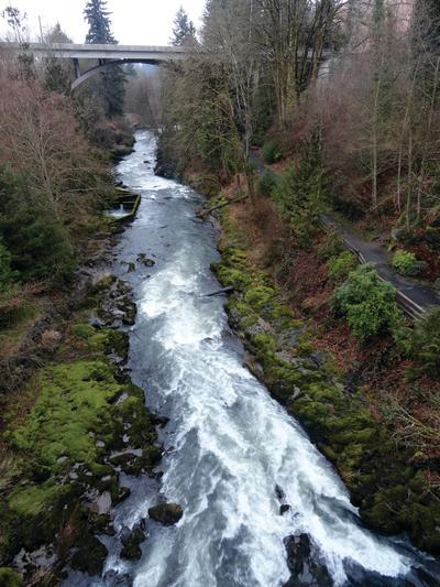 Tumwater Falls Craig Romano