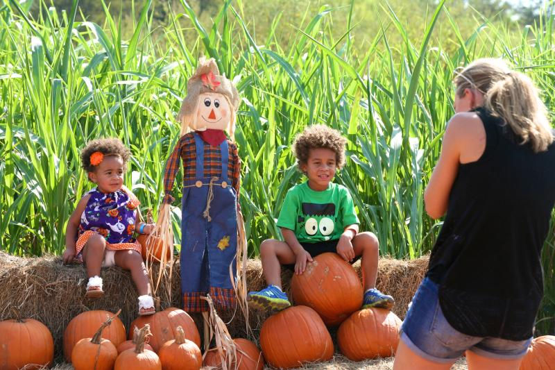 Mother takes photo of children in the Fall Pumpkin Patch at Barton Hill Farms.