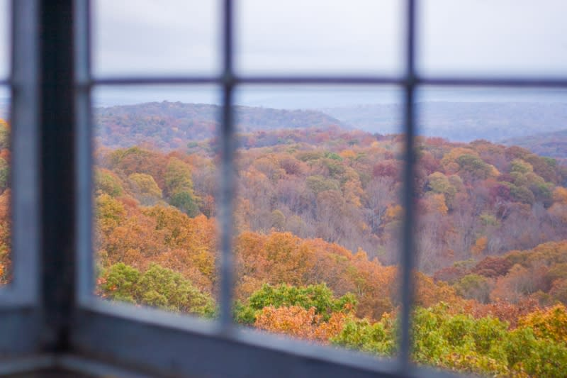 firetower fall