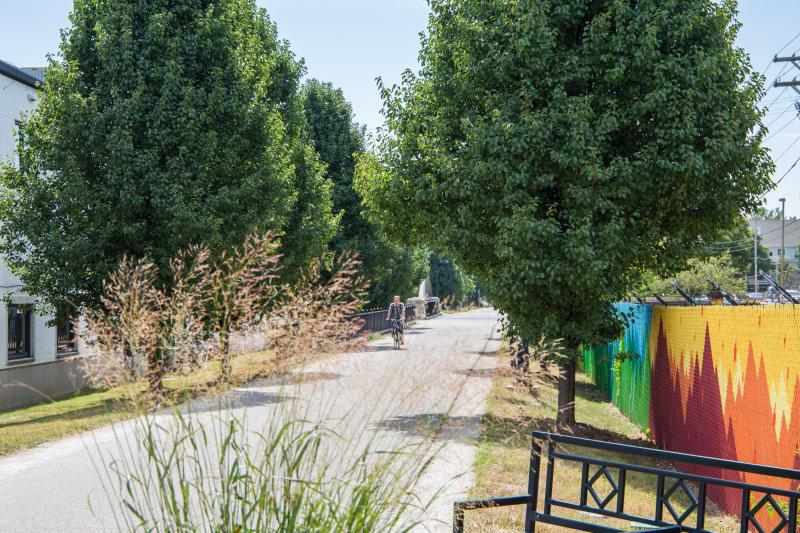 Summer B-Line Biker