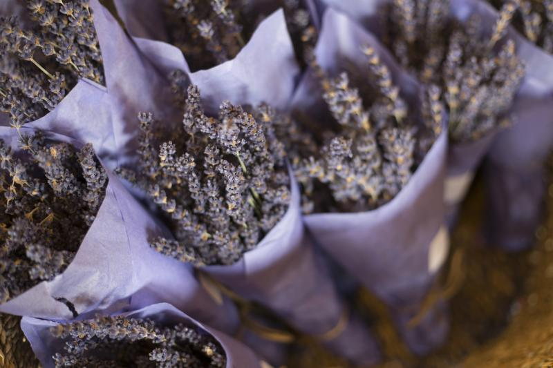 Bouquet of Lavender
