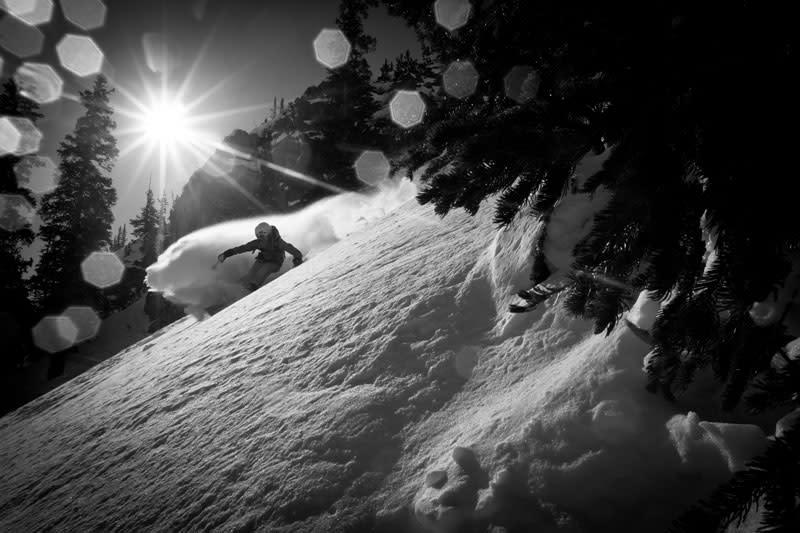 Snowbird skiier