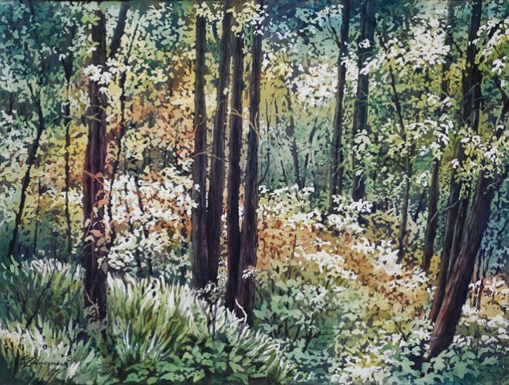 Grand Bois by Sue Zimmerman