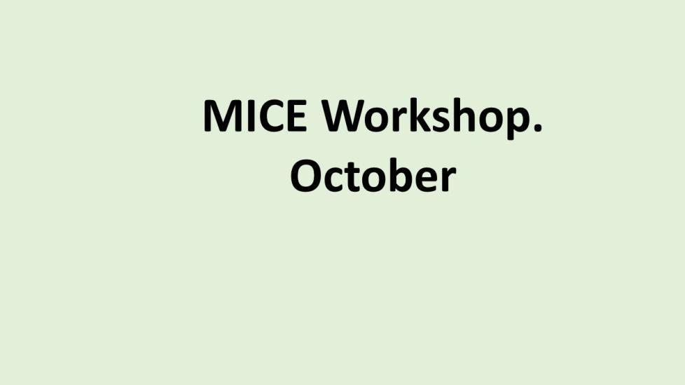 Digital workshop MICE RU