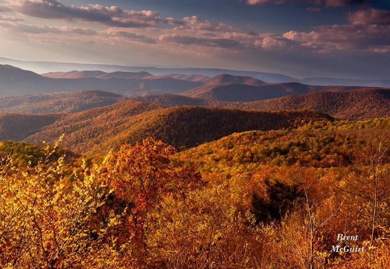 Fall Color Shenandoah NP