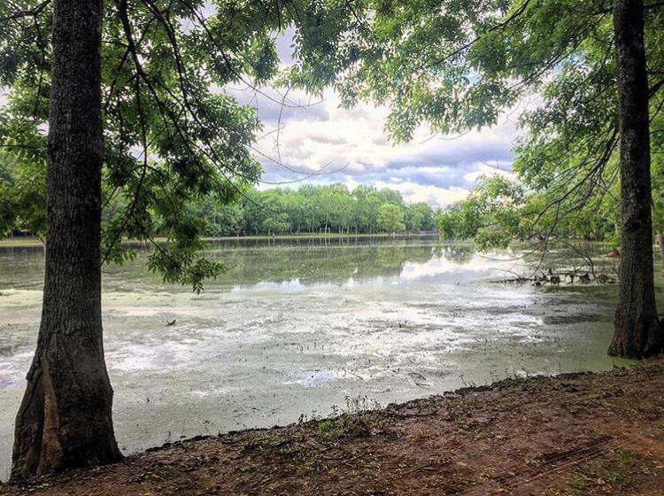 oakville indian mound park