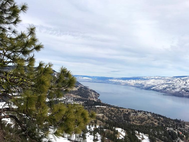 View from Pincushion Mountain