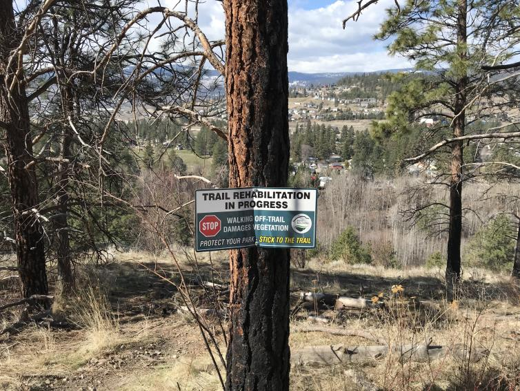 Mount Boucherie Trail