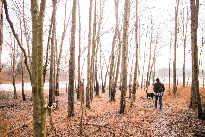 Paynetown Winter Hike
