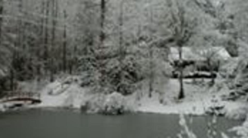 The Cabin in Winter