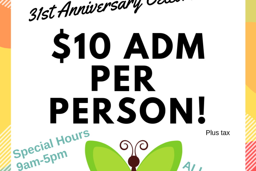 Anniversary Special Offer 2019