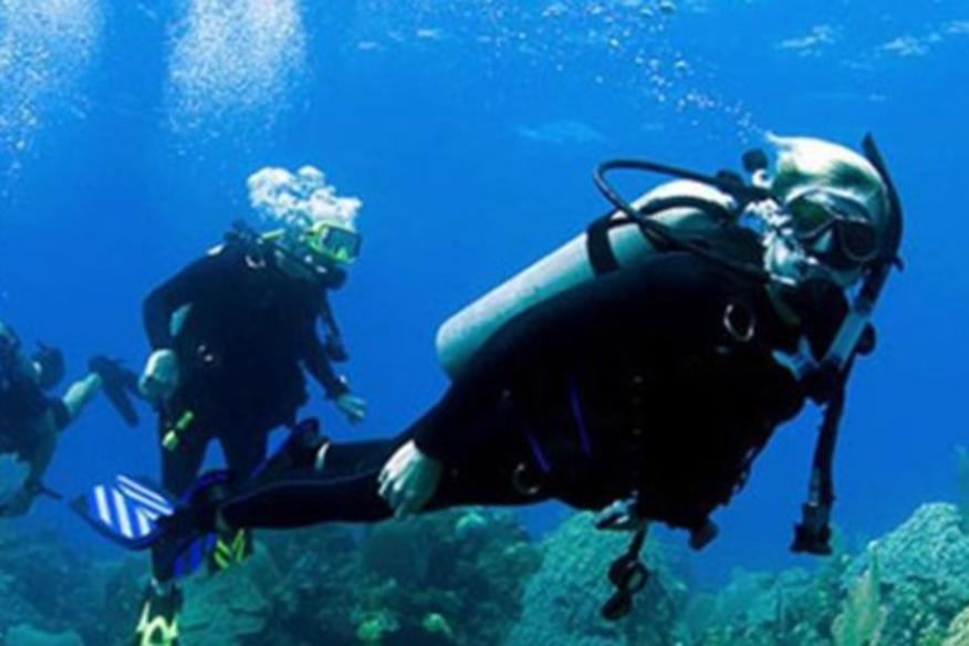 DIVERS DISCOUNT FLORIDA