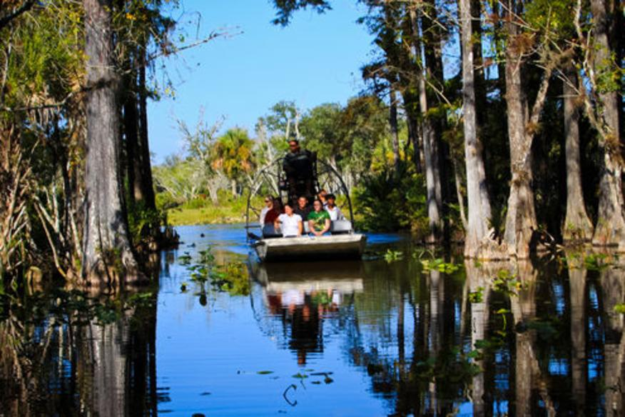 Airboat in Hammock