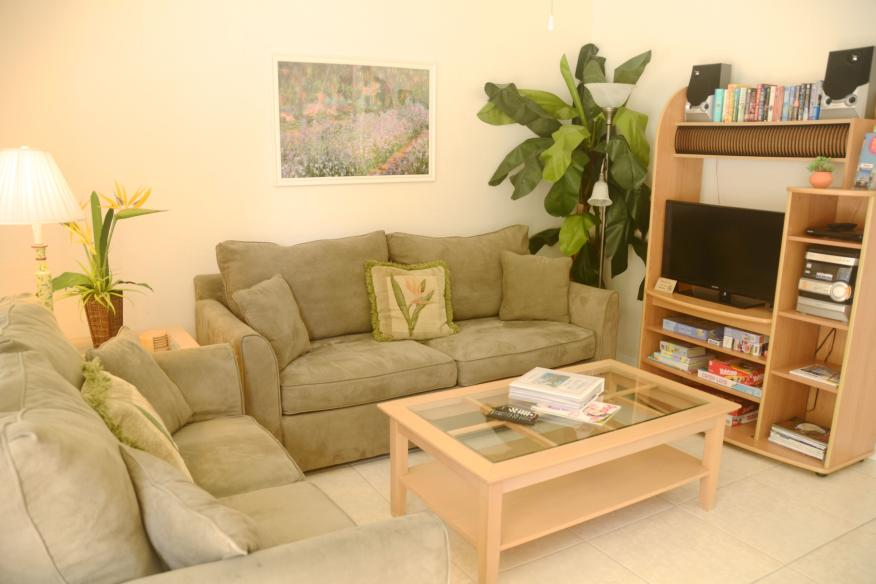 Living room in 1/1 apartment has sleeper