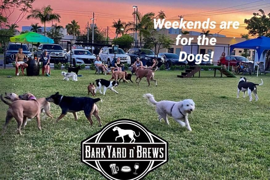 Backyard N' Brews Dogs