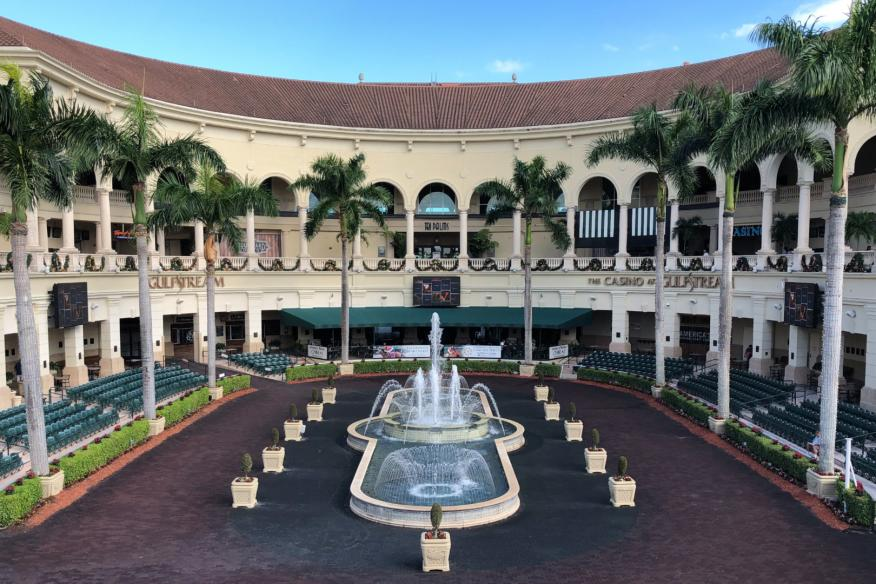 Gulfstream Park Race Experience