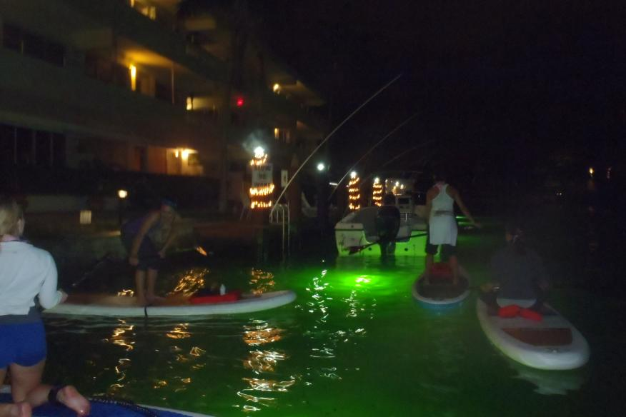Night Paddle Boarding