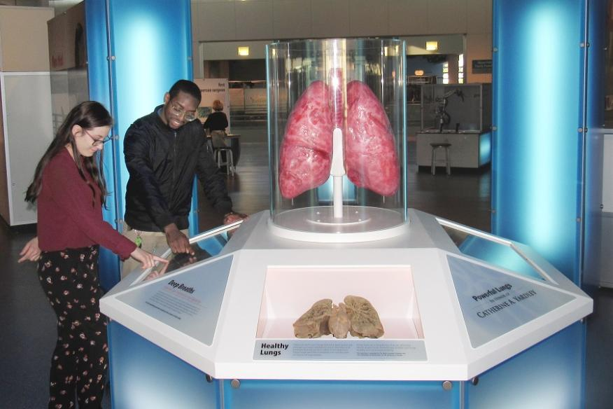 Powerful Lung Photo