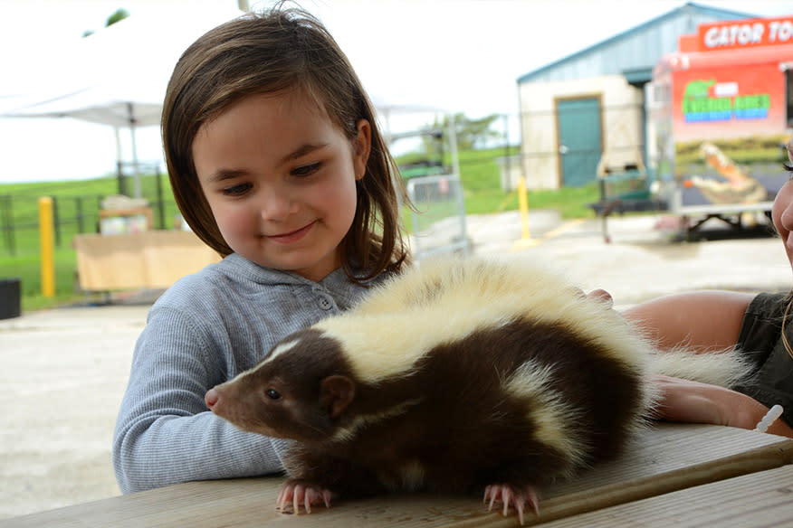 Animal Encounter Cover Photo