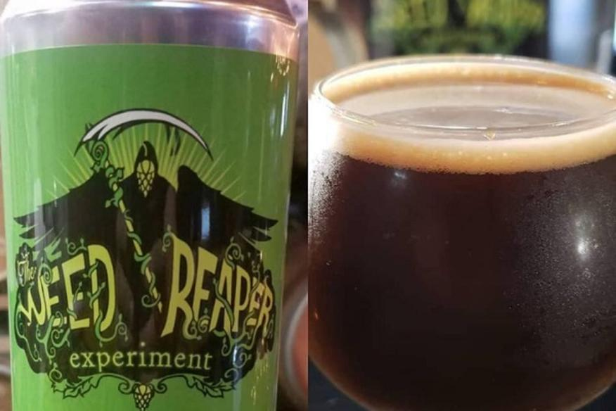 Weed Reaper Experiment Beer Can and Glass
