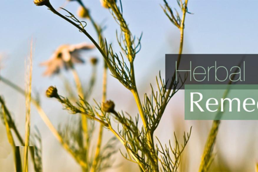 Herbal Gardens