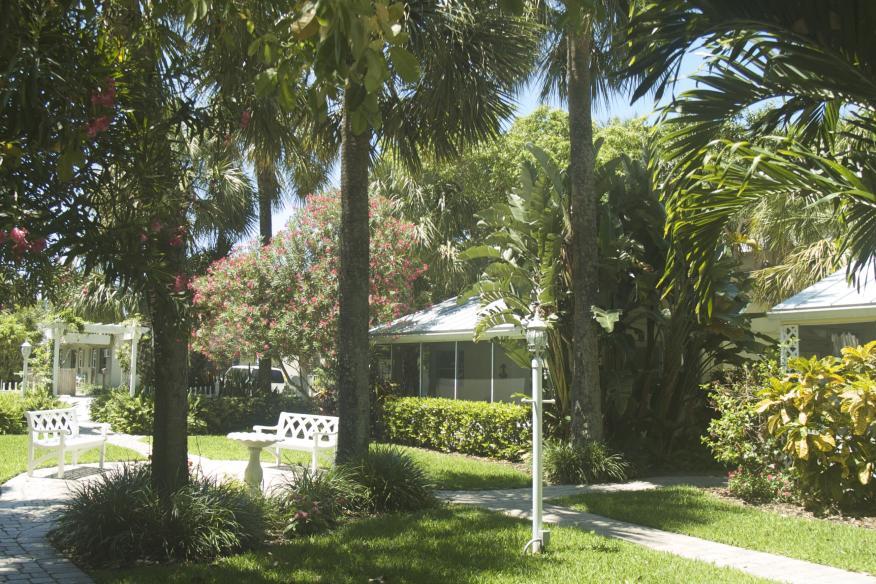 Cottages yard