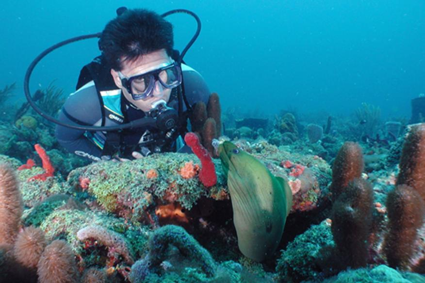 Dive Shipwreck Park and Lady Luck just one mile offshore