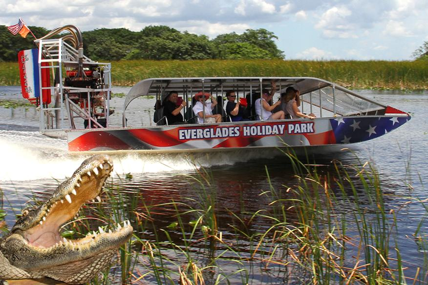 Airboat live