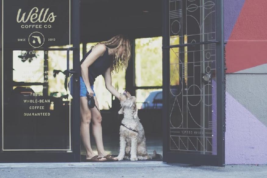 Puppy Love Entrance