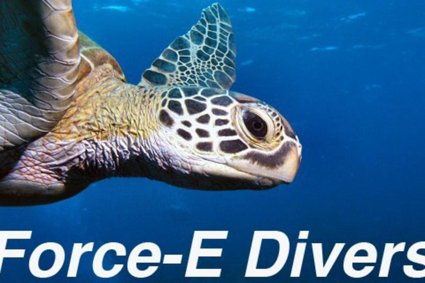 FORCE E - POMPANO BEACH