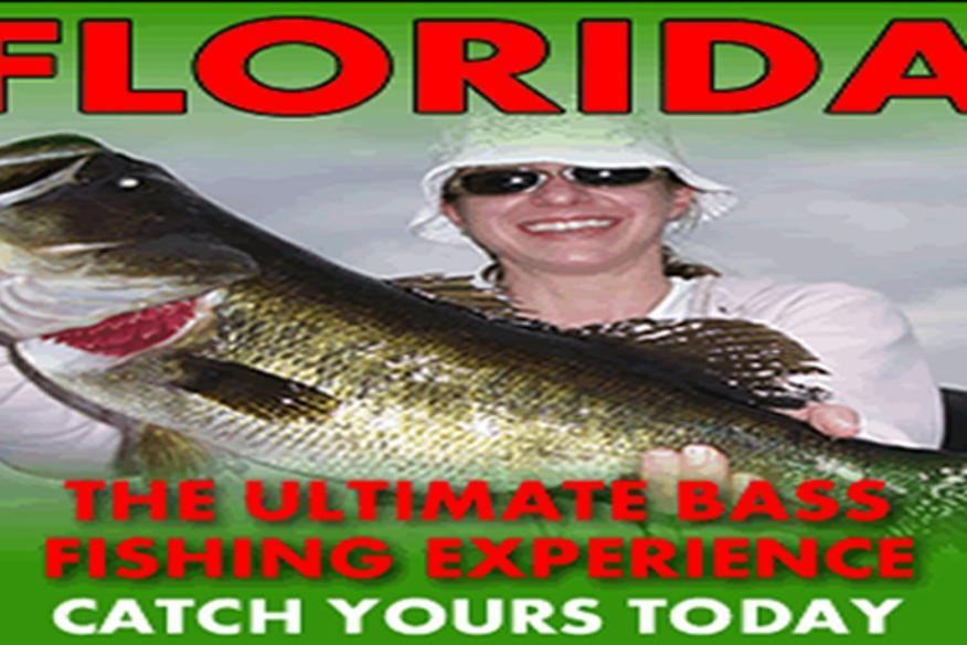 Bass Online