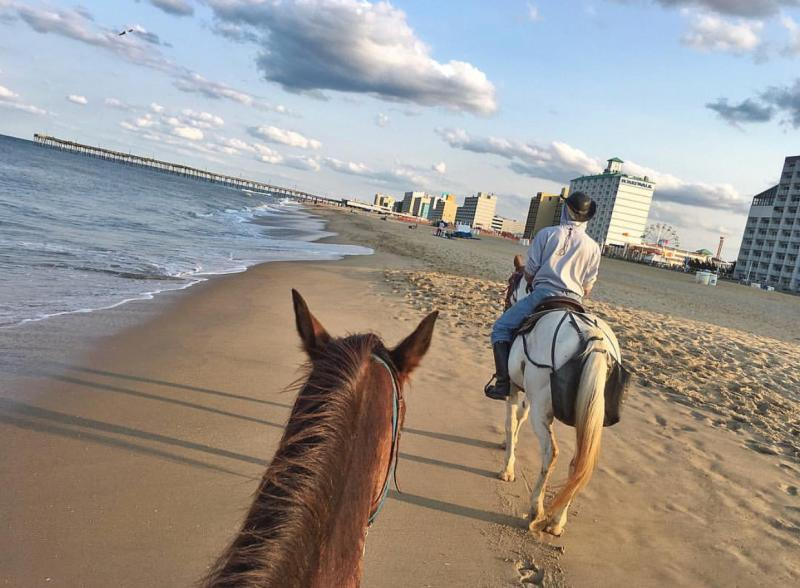 Horseback Riding Oceanfront