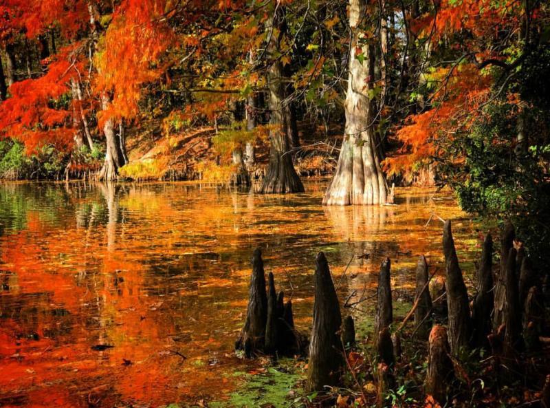 Lake Lawson / Smith Natural Area