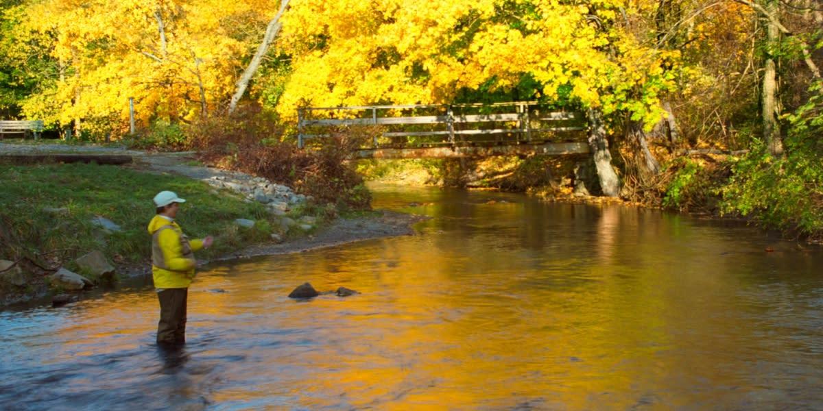 Fisherman at Yellow Breeches Creek