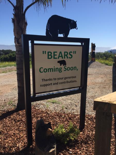 Monterey Zoo Bear Exhibit