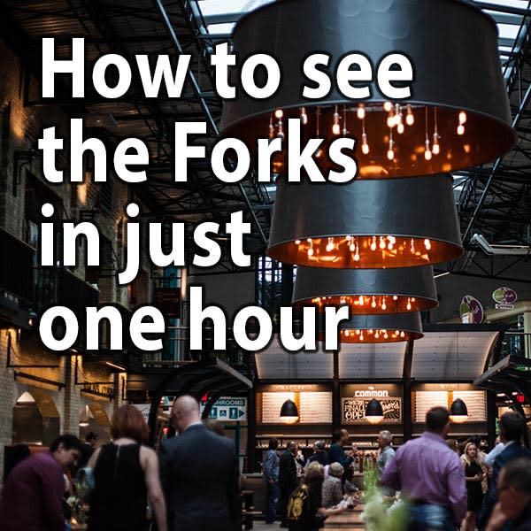 How to see the Forks in just one hour