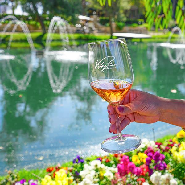 Explore Wine Country