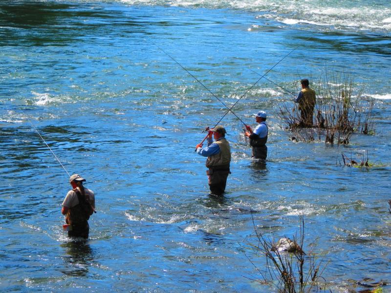 Lewis River Fishing