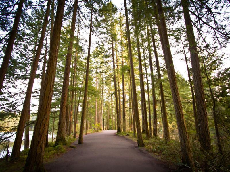 Lacamas Lake Heritage Trail
