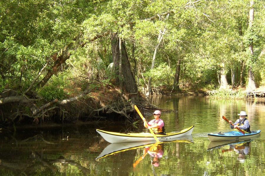 Kayaking Cane Bayou
