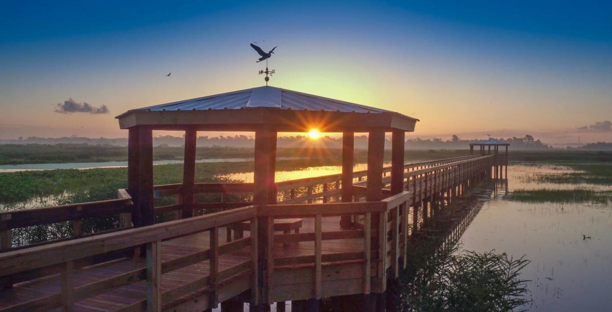 Cattail Marsh Boardwalk