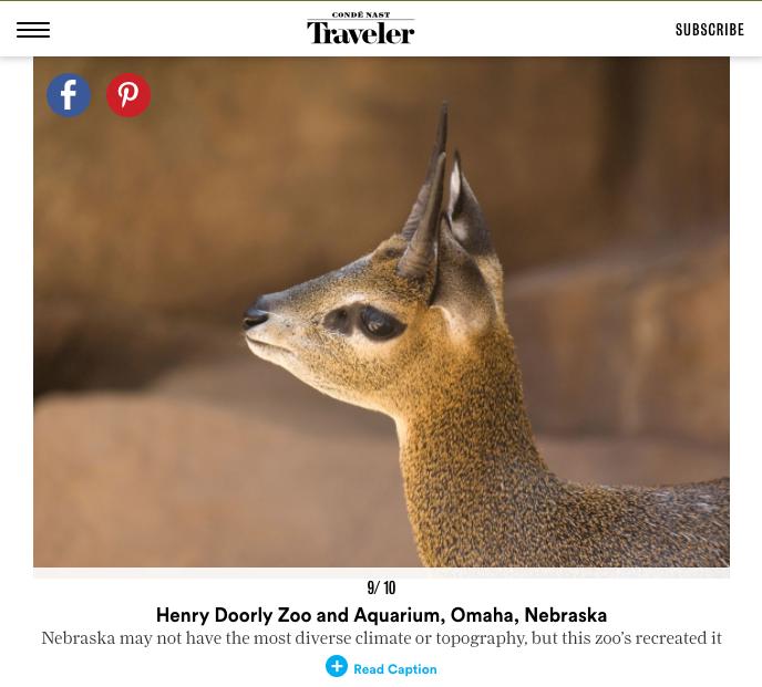 10 Best Zoos in the U.S.