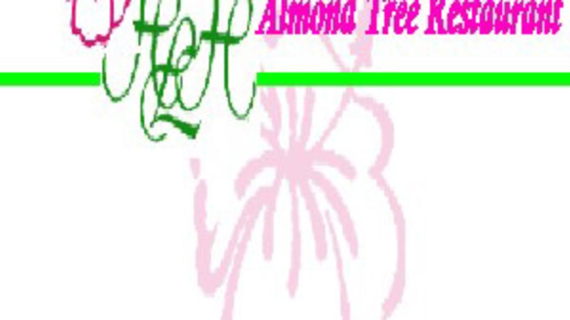 Hibiscus-Logde-Logo