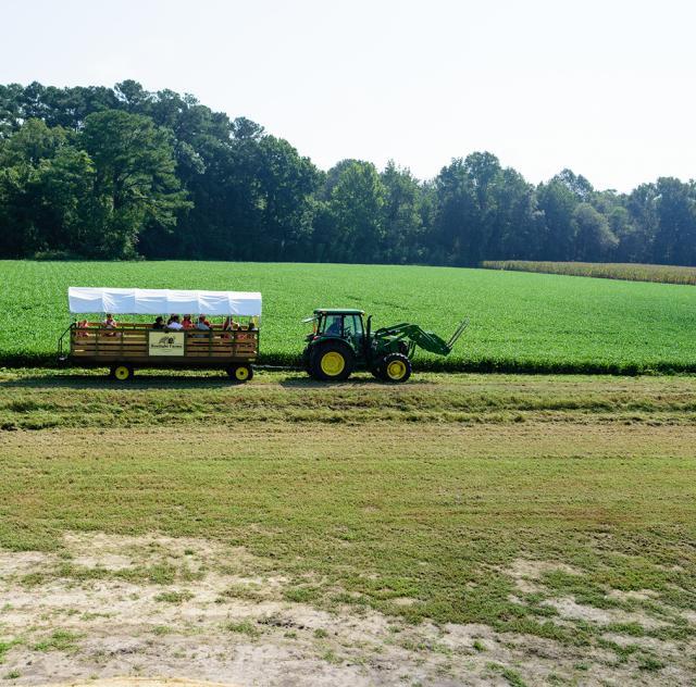 Sonlight Farms