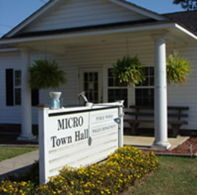 Micro Town Hall