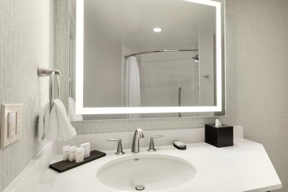Embassy Suites studio bathroom