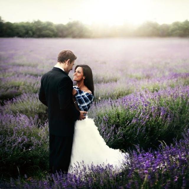 Rosie-Hardy--Lavender-Field-Santaquin