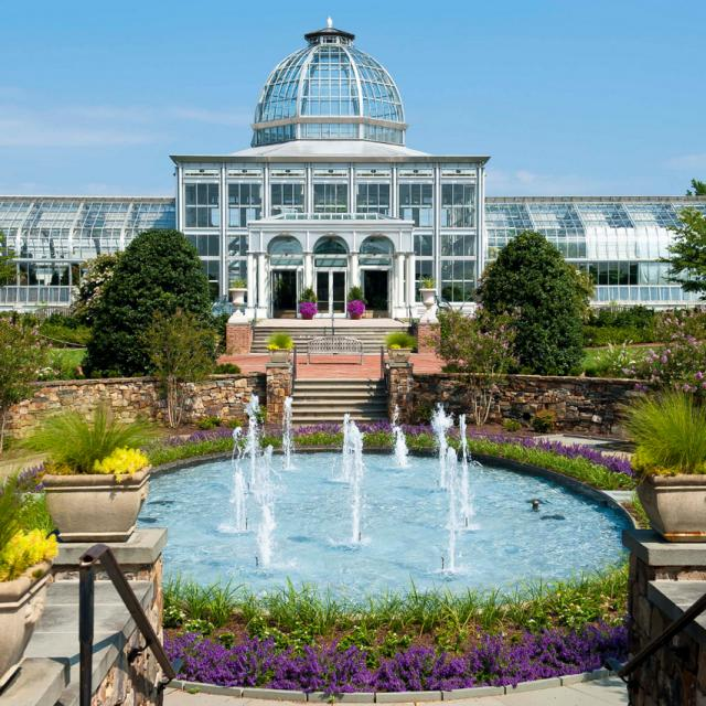 NEW Lewis Ginter