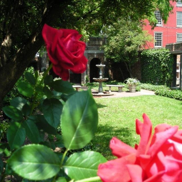 Poe Garden