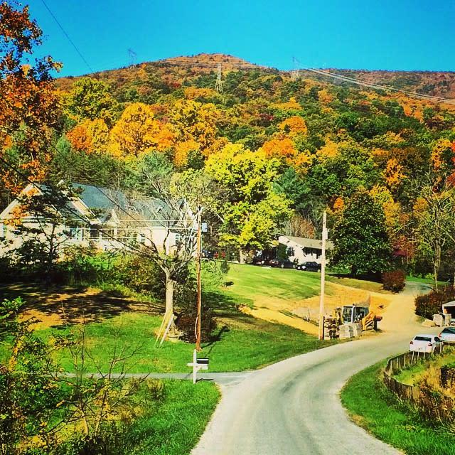 Neighborhood Colors - Fall Photo
